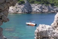 Half Day Boat Tour